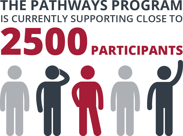 Infographic pathways participants V1